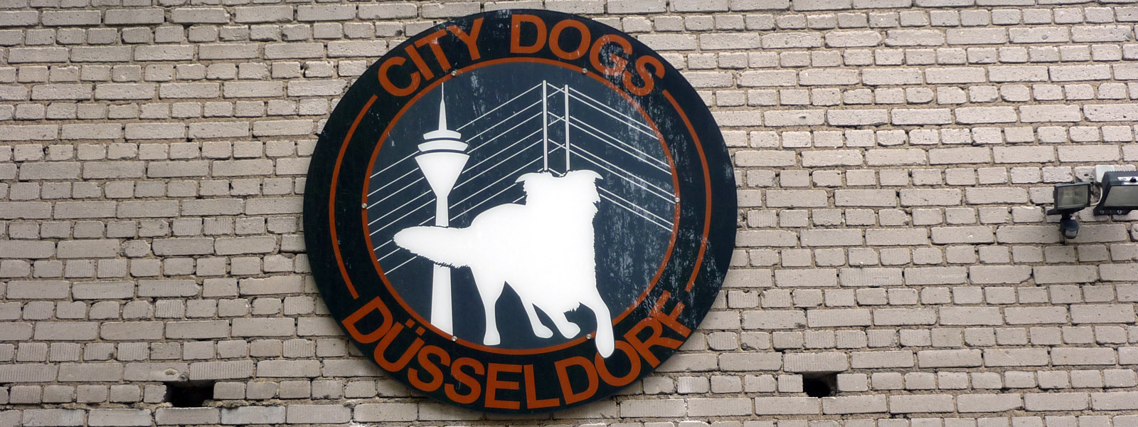 City Dogs Umbauarbeiten